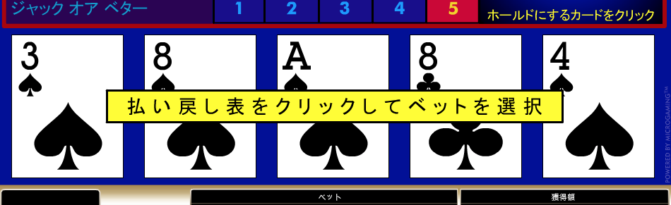 ハズレ〜〜〜〜